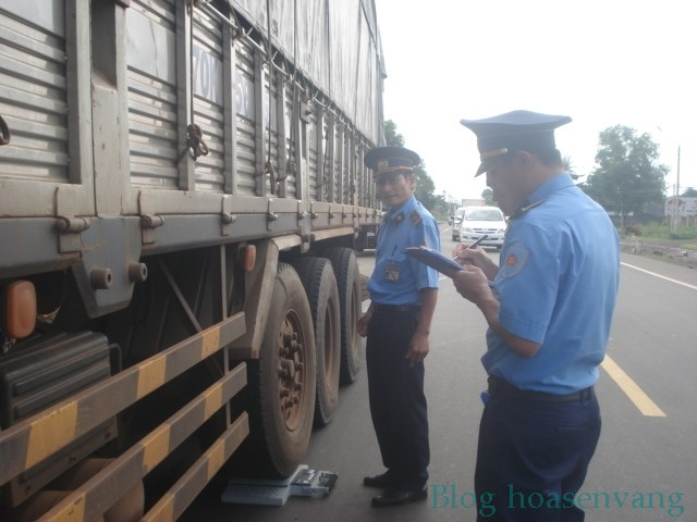 can-oto-dien-tu-truck-load-scale-hoasenvang.com.vn-1