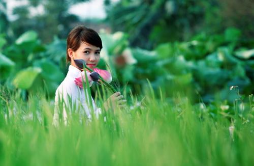 sen-ho-tay-ban-tre-ha-thanh-hoa-sen-4-hoasenvang.com.vn