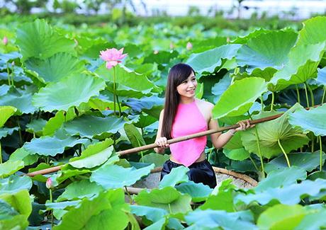 sen-ho-tay-ban-tre-ha-thanh-hoasenvang.com.vn