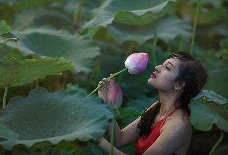 thieu-nu-va-mua-sen-no-het-xinh-dep-hoasenvang.com.vn
