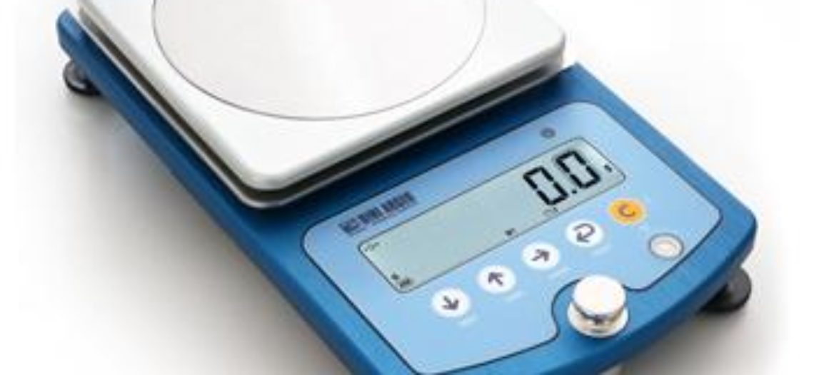 Golden lotus-Dini Argeo's New Bench Scale WLB series