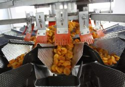 Ishida Flexibility Helps Fruit and Nut Success