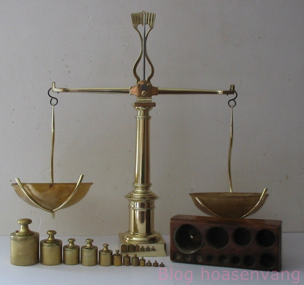 Can-bang-co-kieu-thanh-ngang-weighing-balances-2
