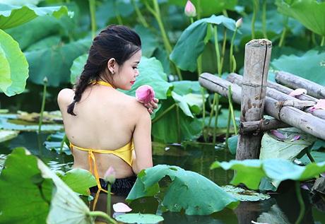 sen-ho-tay-ban-tre-ha-thanh-sen-23-hoasenvang.com.vn