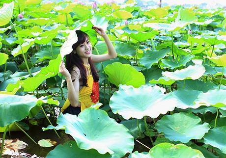 sen-ho-tay-ban-tre-ha-thanh-sen-9-hoasenvang.com.vn