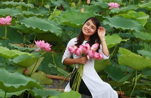 thieu-nu-va-mua-sen-no-het-13-11-hoasenvang.com.vn