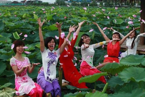 thieu-nu-va-mua-sen-no-het-14-12-hoasenvang.com.vn