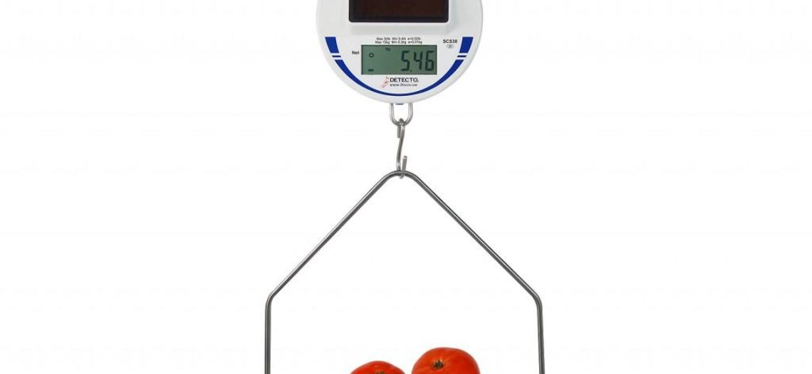 Golden lotus-DETECTO's New Solar-Powered Hanging Scale