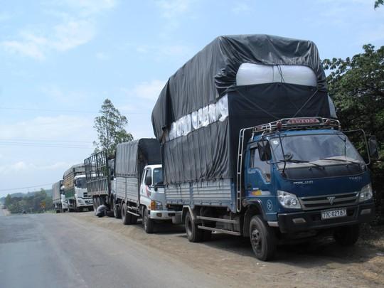 Xe quá tải né trạm cân Phú Yên (xã An Mỹ, huyện Tuy An) Ảnh: Hồng Ánh